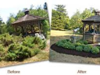 Lawn Care Service in Cincinnati, OH, 45204
