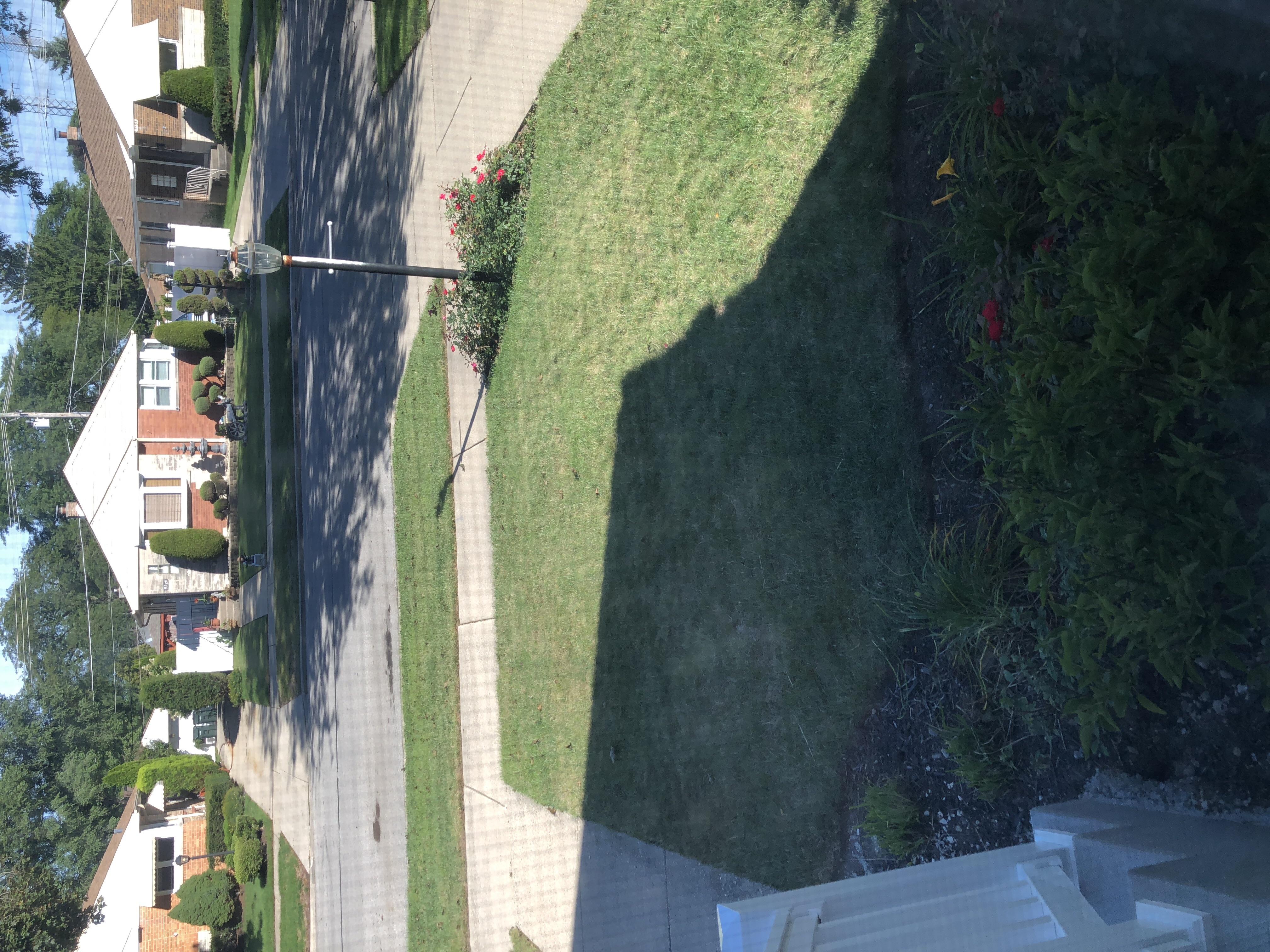 Lawn Care Service in Morton Grove, IL, 60053-2382