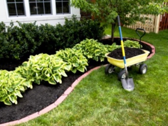 Lawn Care Service in Bowie, MD, 20716