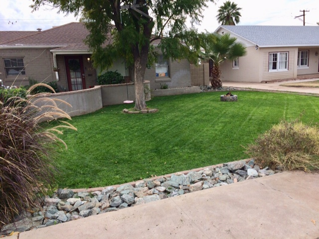 Lawn Care Service in Chandler, AZ, 85226