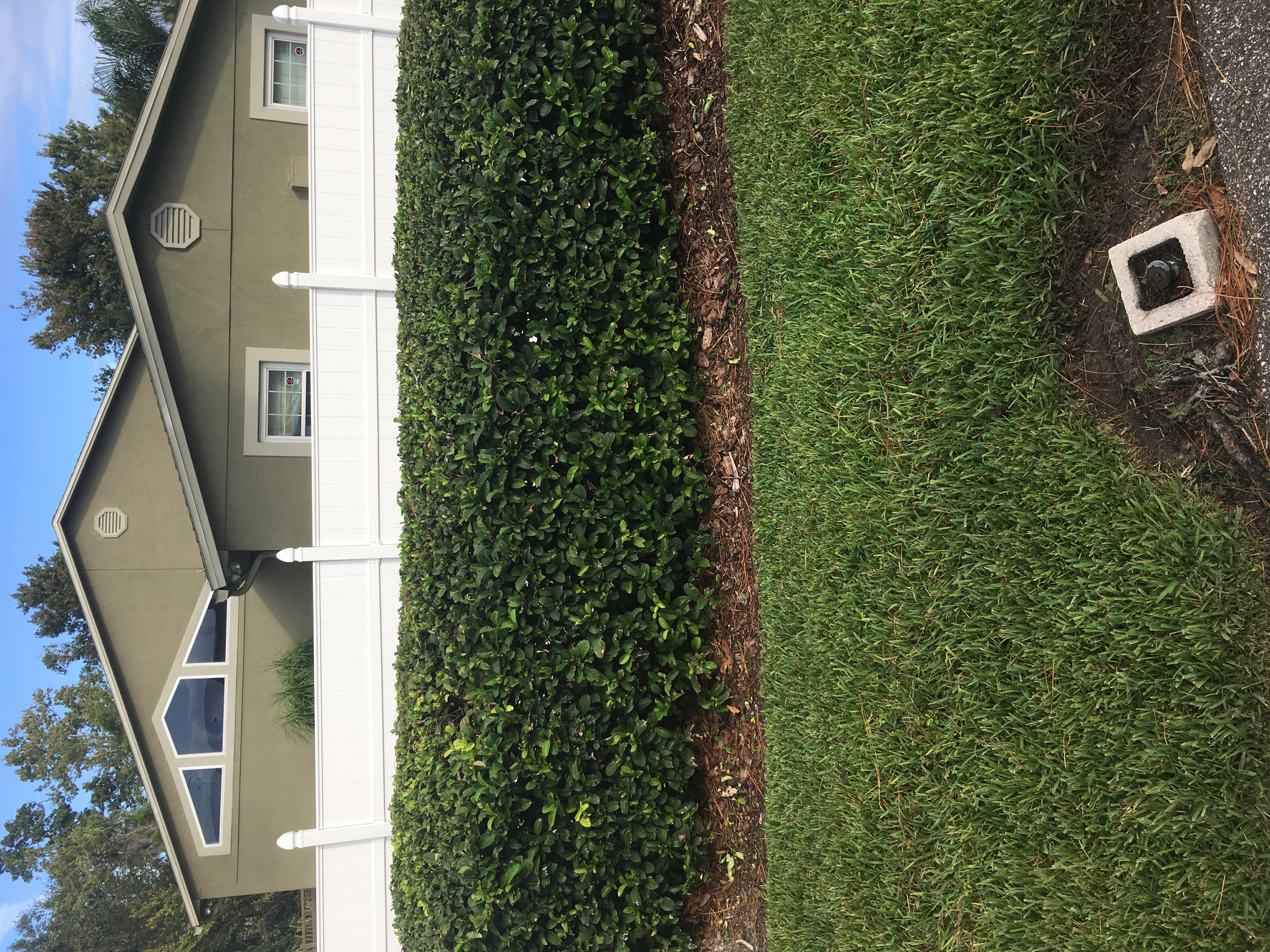 Lawn Care Service in Longwood, FL, 32750