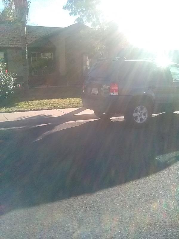 Lawn Care Service in Mesa, AZ, 85207