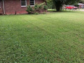 Lawn Care Service in Nashville, TN, 37080