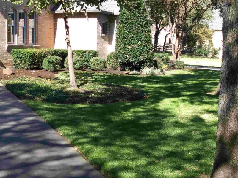 Lawn Care Service in Arlington, TX, 76012