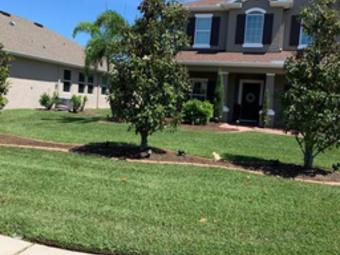 Lawn Care Service in Bradenton, FL, 34208