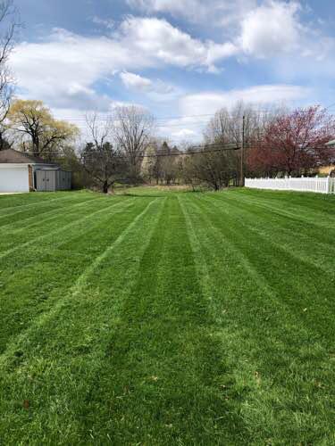 Lawn Care Service in Parma, OH, 44134