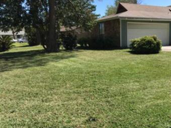 Lawn Care Service in Orange Park, FL, 32073