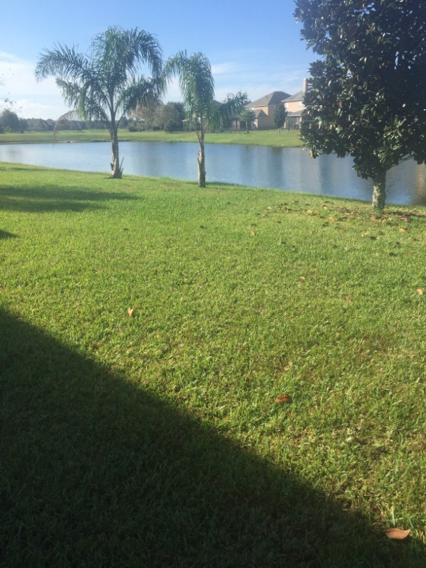 Lawn Care Service in Palm Coast, FL, 32137