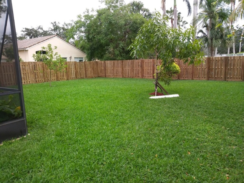 Lawn Care Service in Hollywood, FL, 33020
