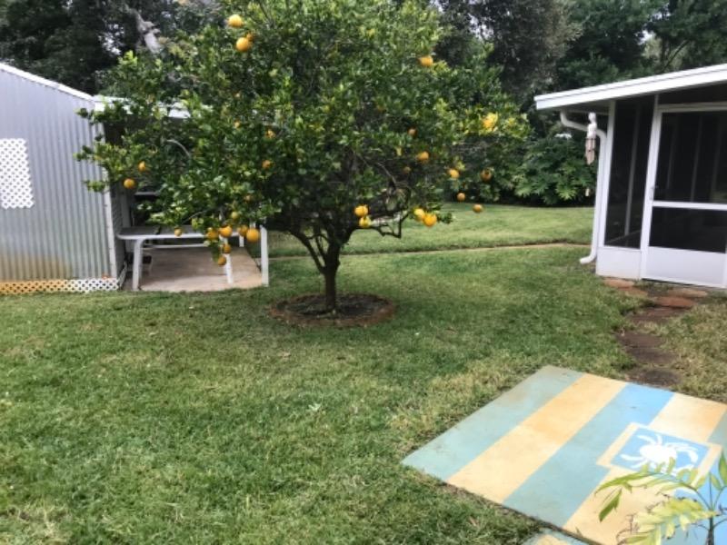 Lawn Care Service in New Smyrna Beach, FL, 32168