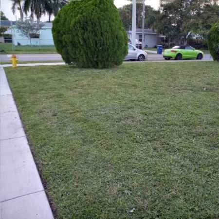 Lawn Care Service in Fort Lauderdale, FL, 33315