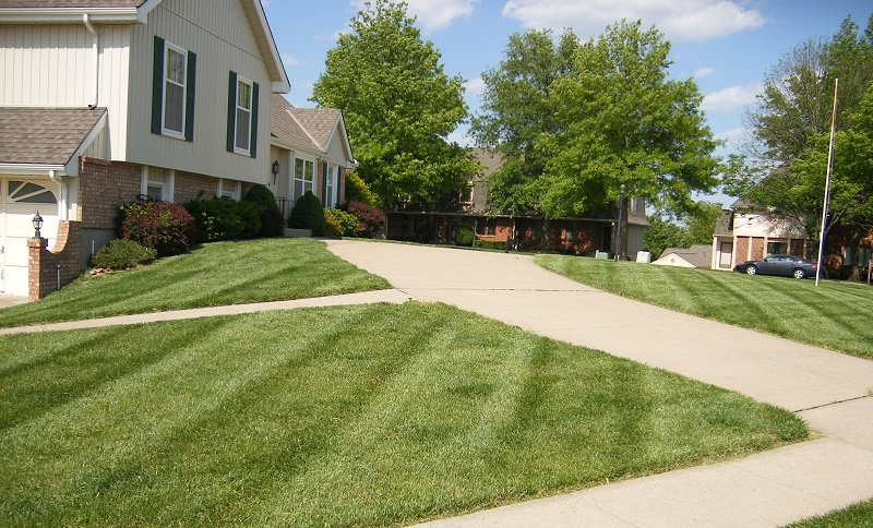 Lawn Care Service in Columbus, OH, 43219