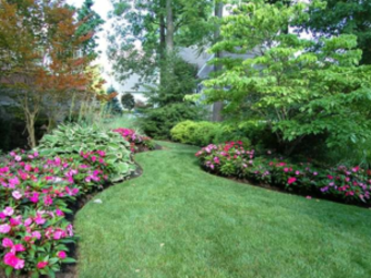 Lawn Care Service in Indianapolis, IN, 46219