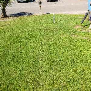 Lawn Care Service in Summerville, SC, 29483