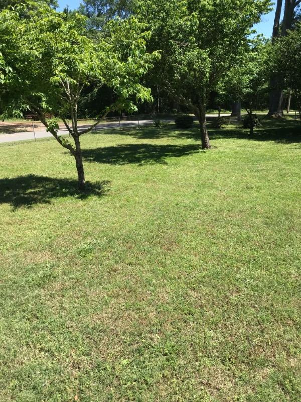 Lawn Care Service in Dallas, NC, 28658