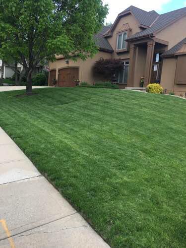 Lawn Care Service in Kansas City, KS, 66106