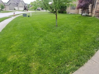 Lawn Care Service in Kansas City, MO, 64138