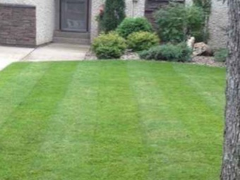 Lawn Care Service in Kansas City, MO, 64133