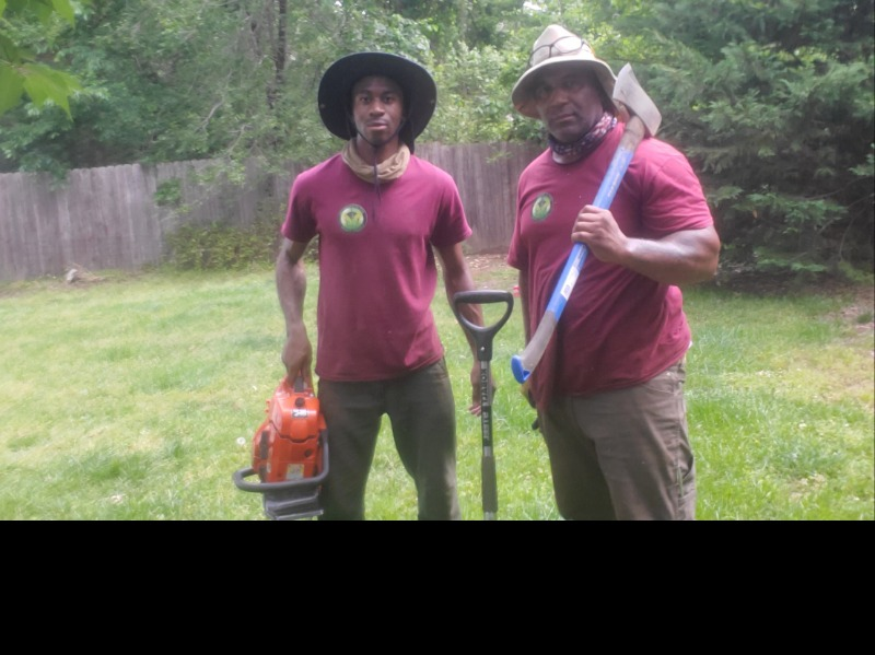Lawn Care Service in Brooklyn Park, MD, 21075