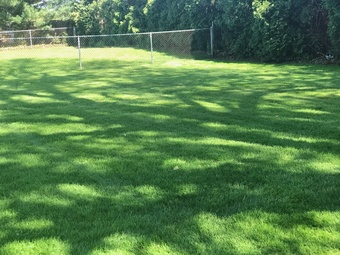 Lawn Care Service in Lyndhurst, OH, 44124