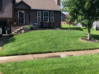 Lawn Care Service in Basehor, KS, 66007