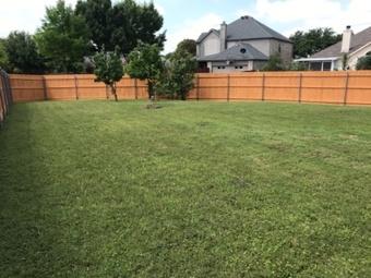 Lawn Care Service in Rowlett, TX, 75089