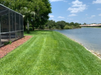 Lawn Care Service in Fort Myers, FL, 33913