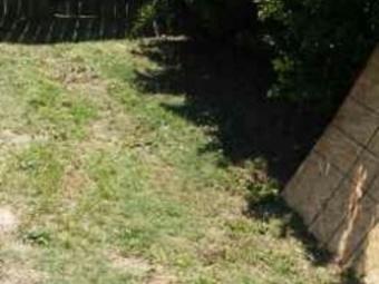 Lawn Care Service in Creedmoor, NC, 27522
