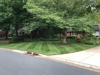 Lawn Care Service in Charlotte, NC, 28226