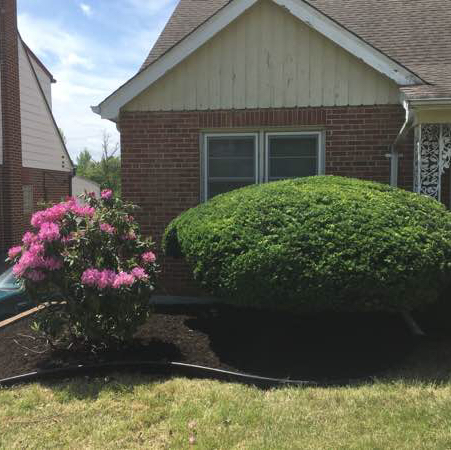 Lawn Care Service in Benld, IL, 62009