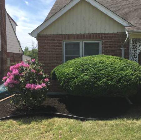 Lawn Care Service in Benld, IL, 62002