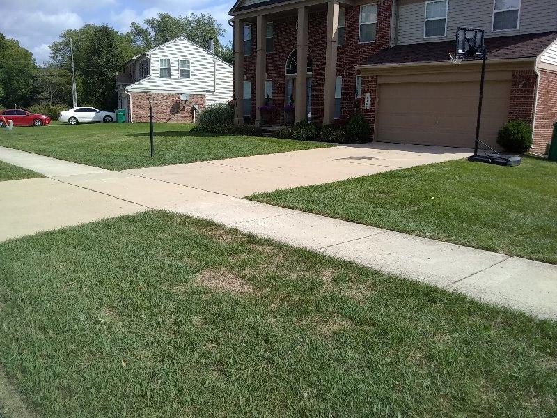 Lawn Care Service in Willis, MI, 48191