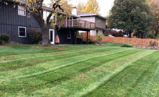 Lawn Care Service in Crest Hill, IL, 60403