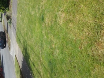 Lawn Care Service in Portland, OR, 97230