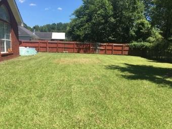 Lawn Care Service in Savannah, GA, 31405