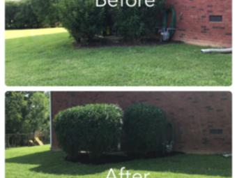 Lawn Care Service in Rockvale, TN, 37153
