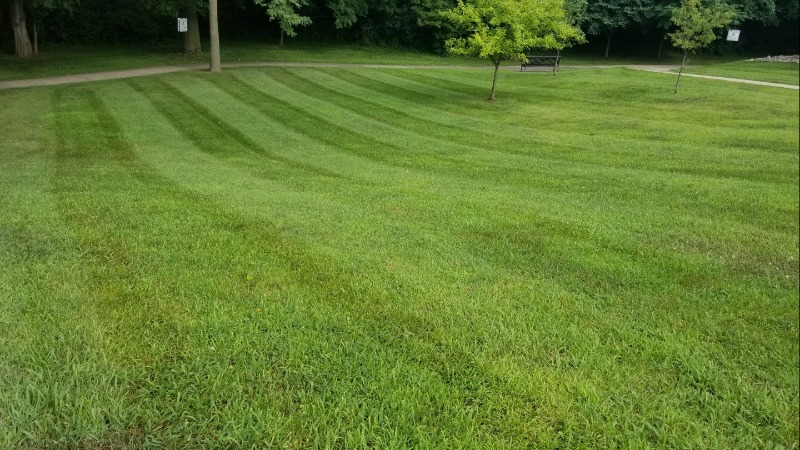 Lawn Care Service in West Des Moines, IA, 50265