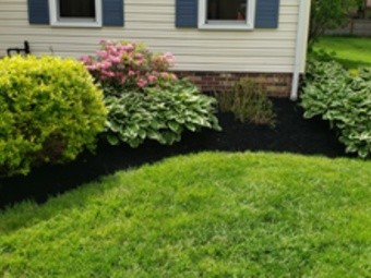 Lawn Care Service in Akron, OH, 44306