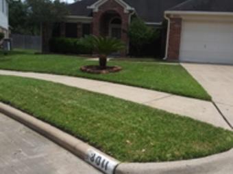 Lawn Care Service in Houston, TX, 77047
