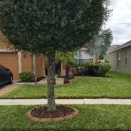 Lawn Care Service in Tampa, FL, 33605