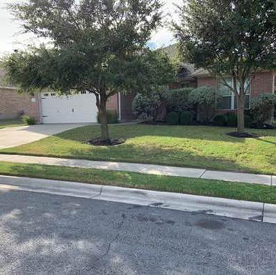 Lawn Care Service in Hutto, TX, 78634