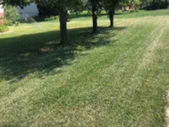Lawn Care Service in Omaha, NE, 68114