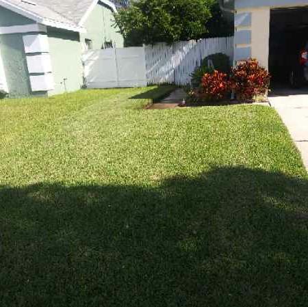 Lawn Care Service in Orlando, FL, 32808