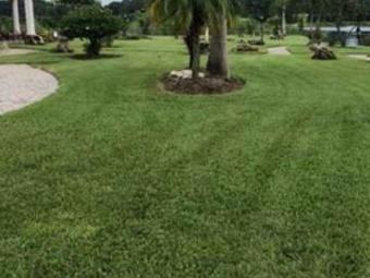 Lawn Care Service in North Providence , RI, 02911