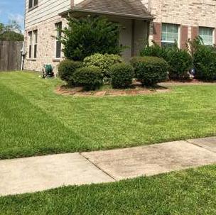 Lawn Care Service in Dayton, TX, 77535
