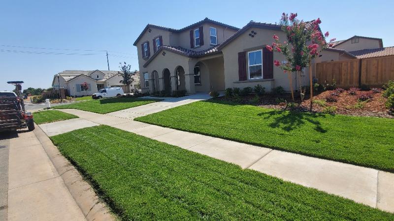Lawn Care Service in Davis, CA, 95618
