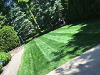 Lawn Care Service in Warren, MI, 48091
