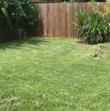 Lawn Care Service in Houston, TX, 77076