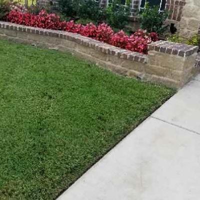 Lawn Care Service in Dallas, TX, 75232