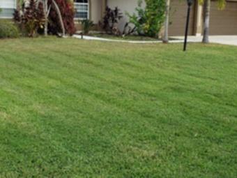 Lawn Care Service in Palmetto, FL, 34221